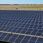 GREEN VALLEY SEED MEETING PRODUCT DEMAND IN THE SOLAR FARM INDUSTRY
